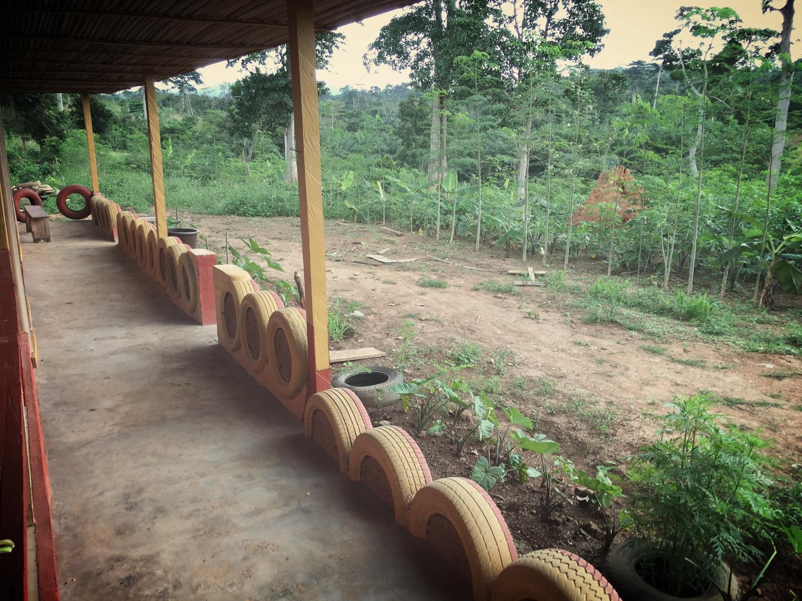 School farm.JPG