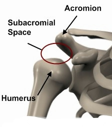 Sub acromial space