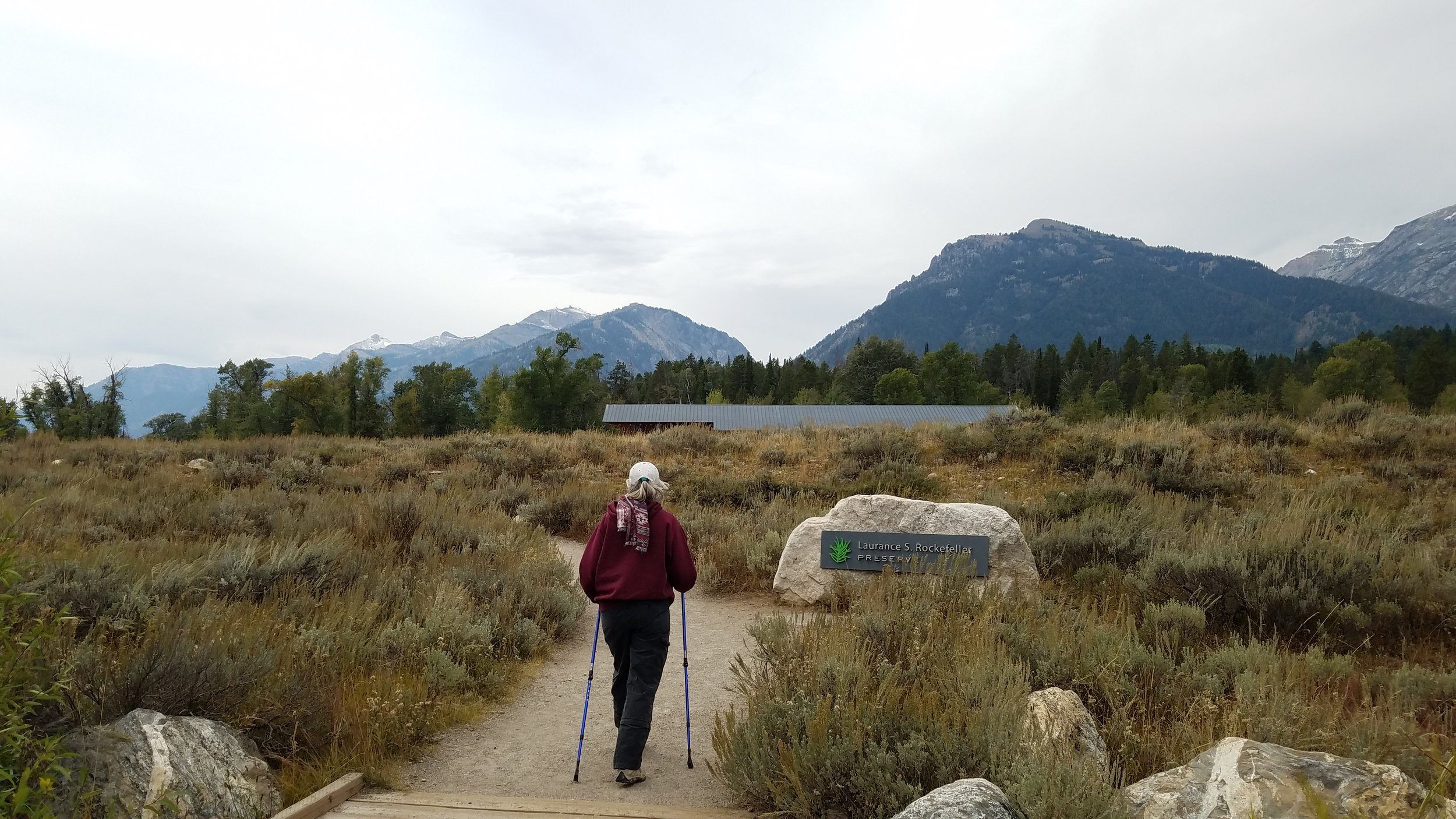 """Approaching the amazing Laurence Rockefeller visitor center, a magnificent hiking environment (the """"beware of bear"""" signs perfectly appropriate reminders that we are visitors in their home)."""