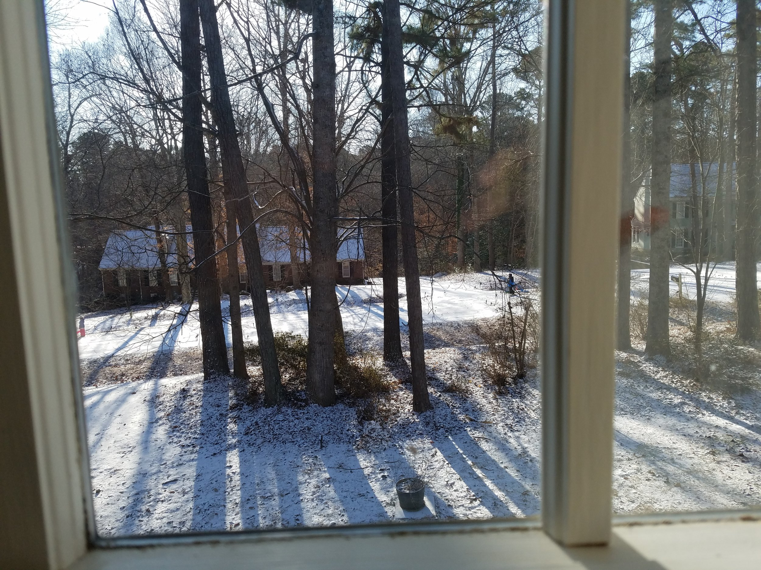 View out of my office window on January 4
