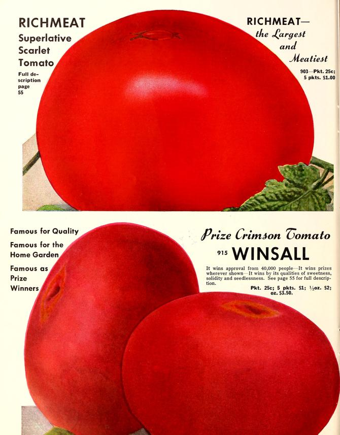 Tomato page from a 1952 Henderson catalog, featuring two of their large, open pollinated varieties, considered to be heirlooms today.