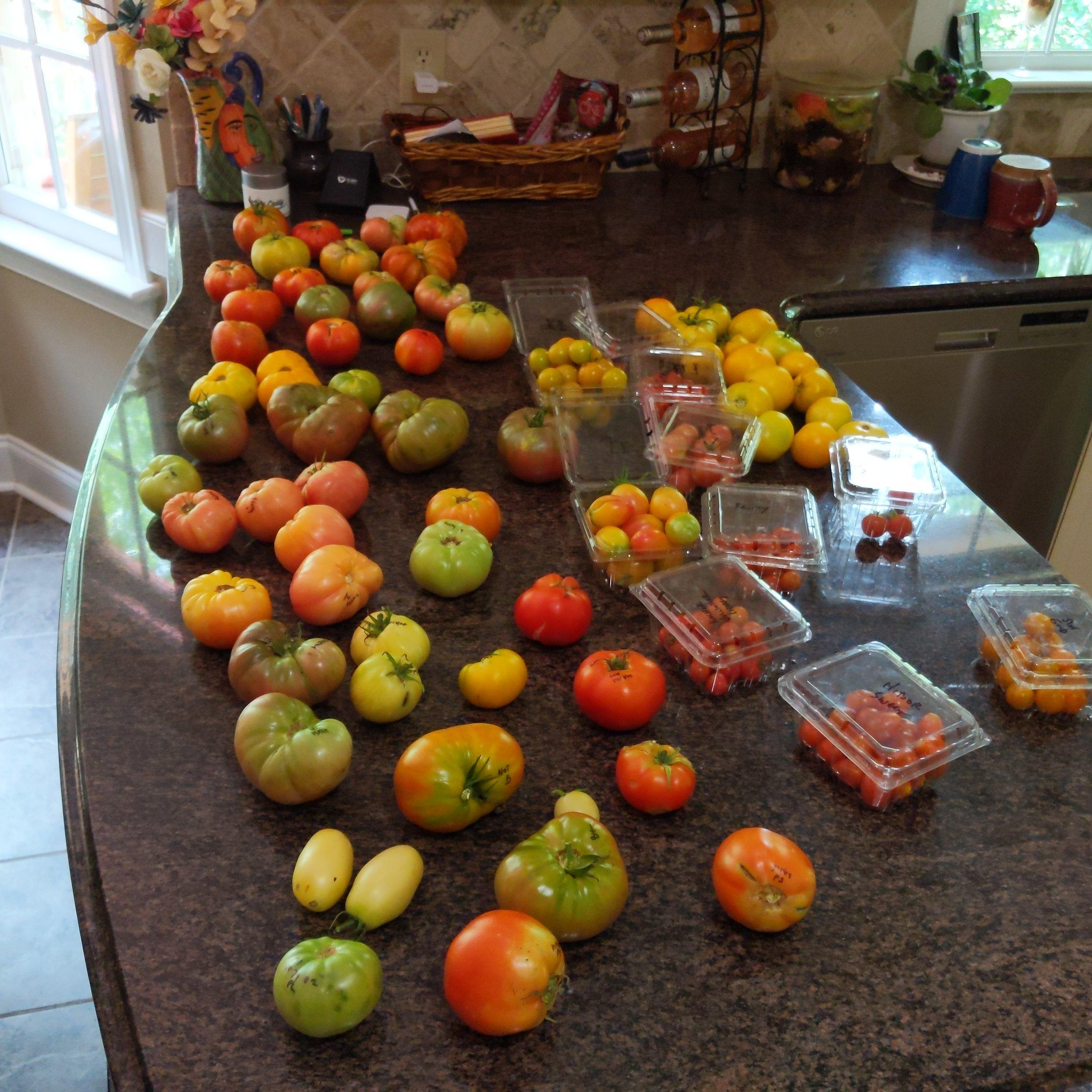 July 19 harvest