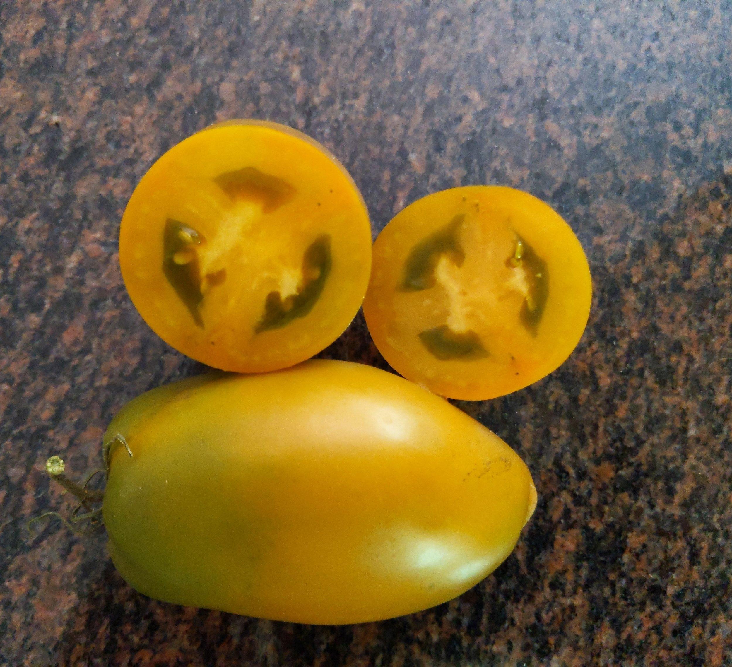 A wonderful recent Dwarf Tomato Project release, Dwarf Tiger Eye