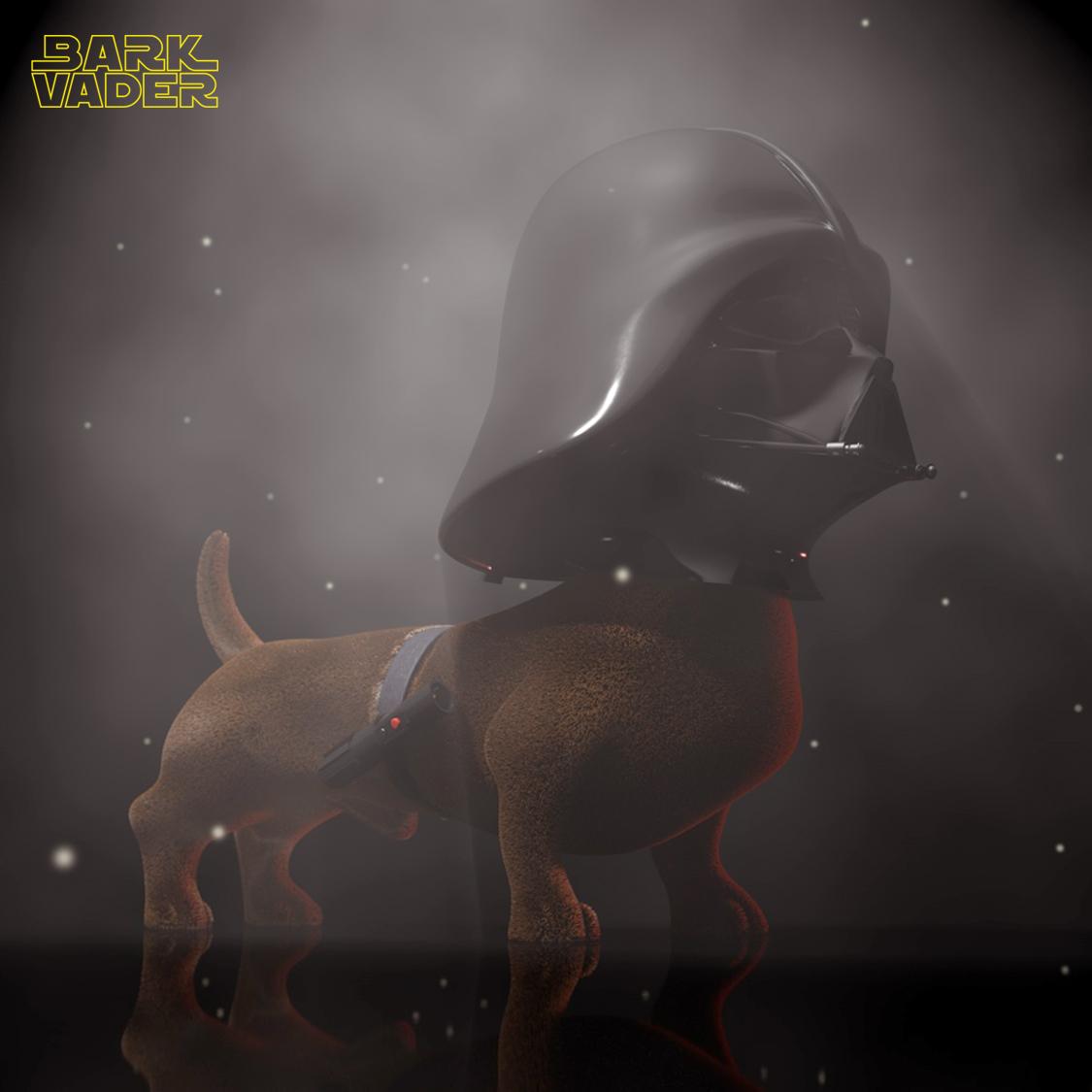 Bark Vader0077 copy.jpg