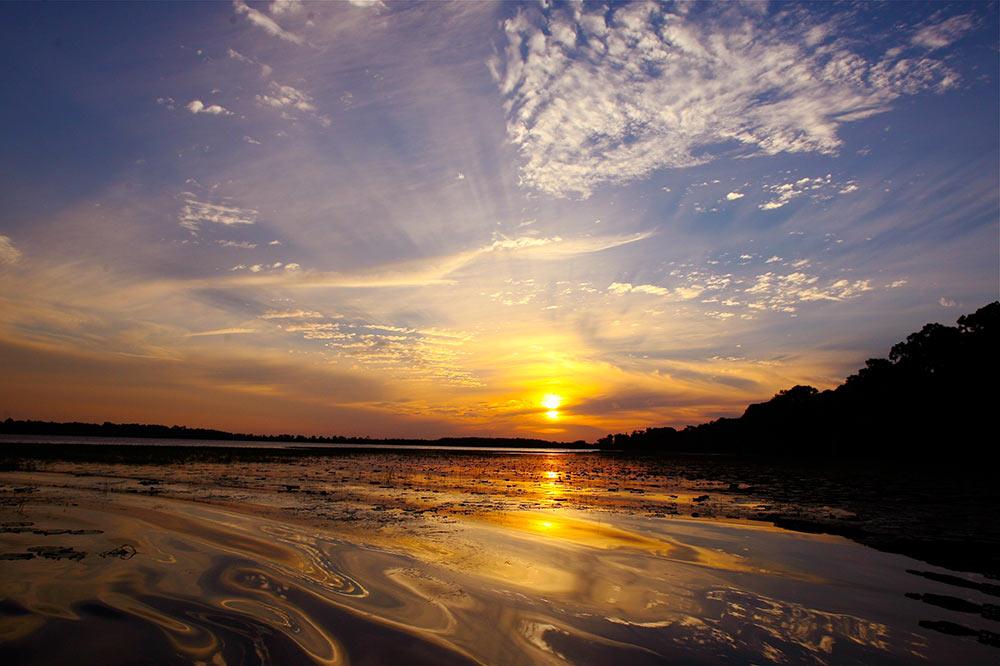 Nona sunset rollers.jpg