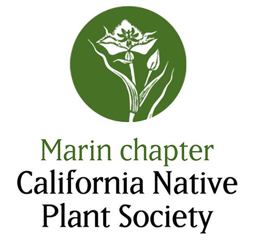 MCNPS logo spring green SM.jpg