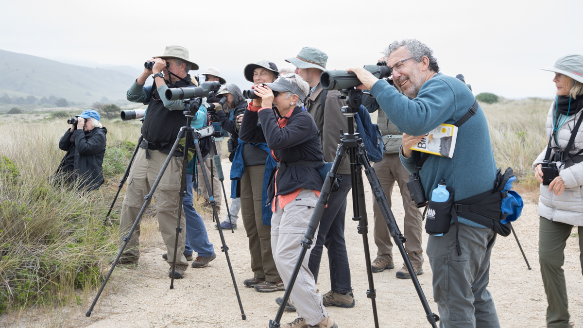 014-2019-Point-Reyes-Birding-Festival-Web-Sized.jpg