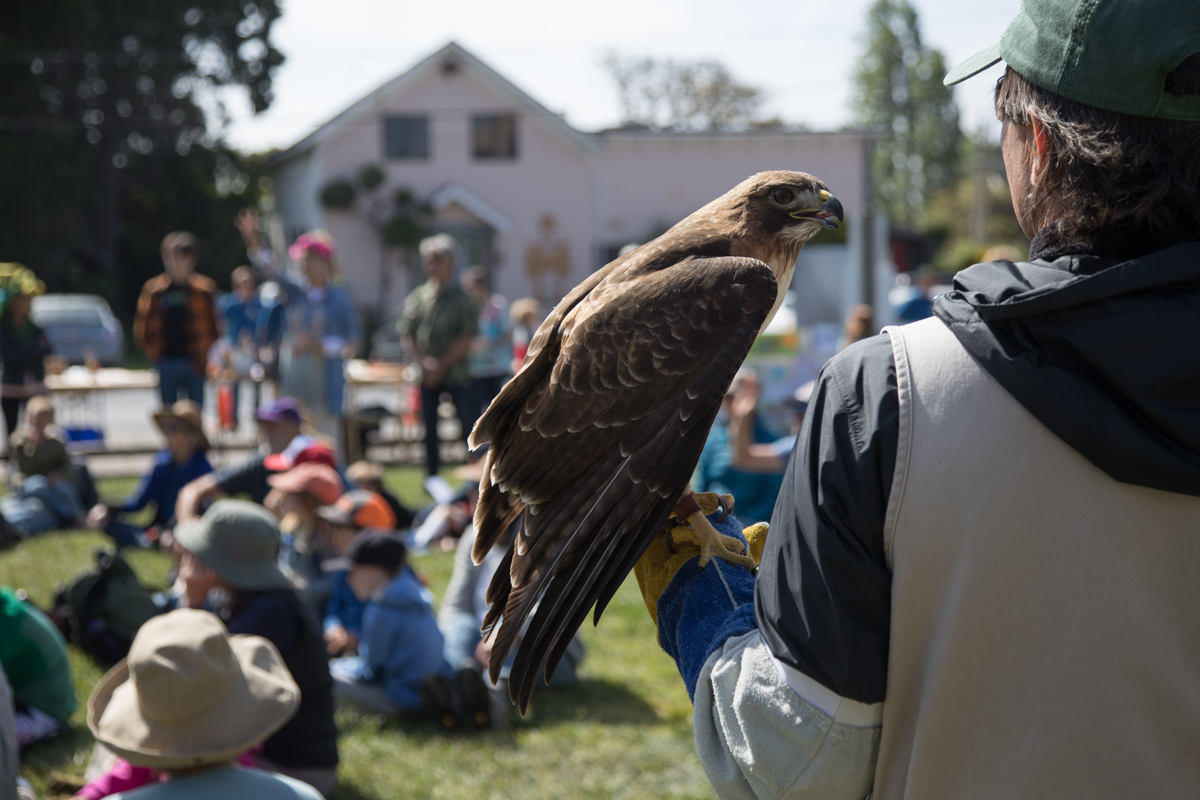 200-2019-Point-Reyes-Birding-Festival-Web-Sized.jpg