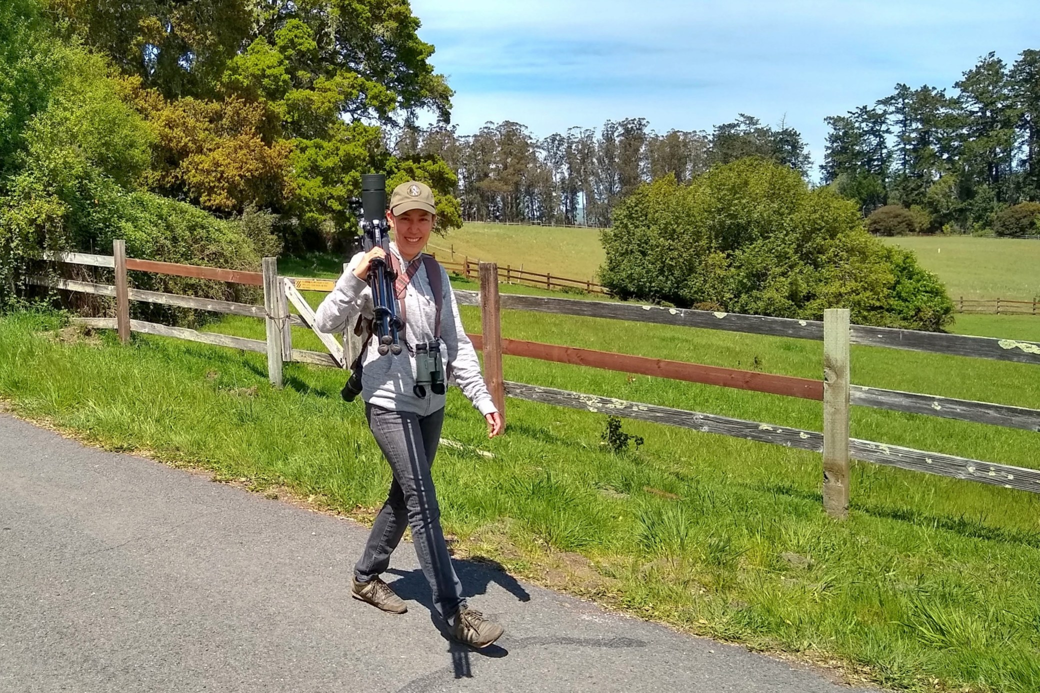 Read  Blog:  Marin County Birding: Woodpecker Trail, Point Reyes National Seashore