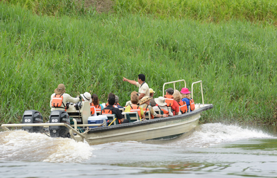 Amazon Discovery - Wildlife Spotting.jpg