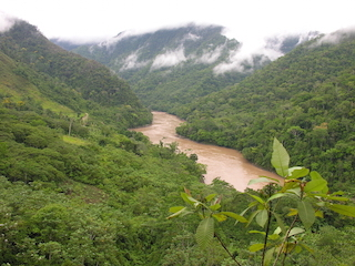 Huallaga River - a tributary of the Amazon.