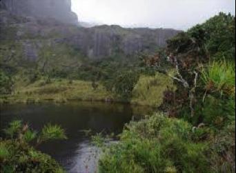 Southern Ecuador - Yacuri National Park.png