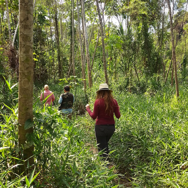Mizen x 2 - Tambopata Research Center - Jungle Hike.jpg