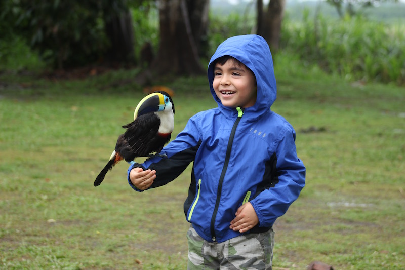 Walter x 3 - Sinchicuy Amazon Lodge - Andrew with Toucan.jpg