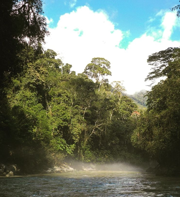 Tarapoto Adventure Excursions - Abiseo River.jpg