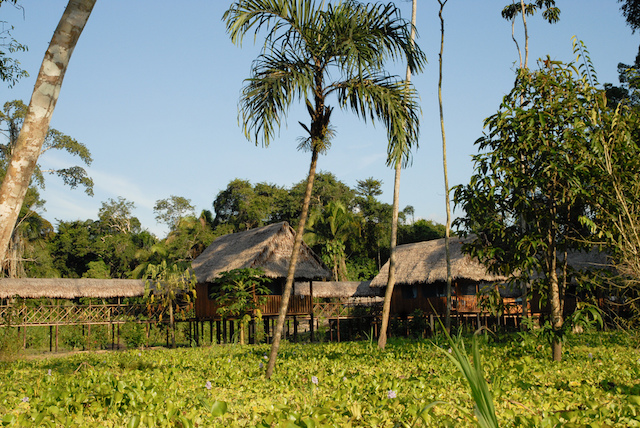 Curassow Lodge has 10 bungalows linked by walkways.