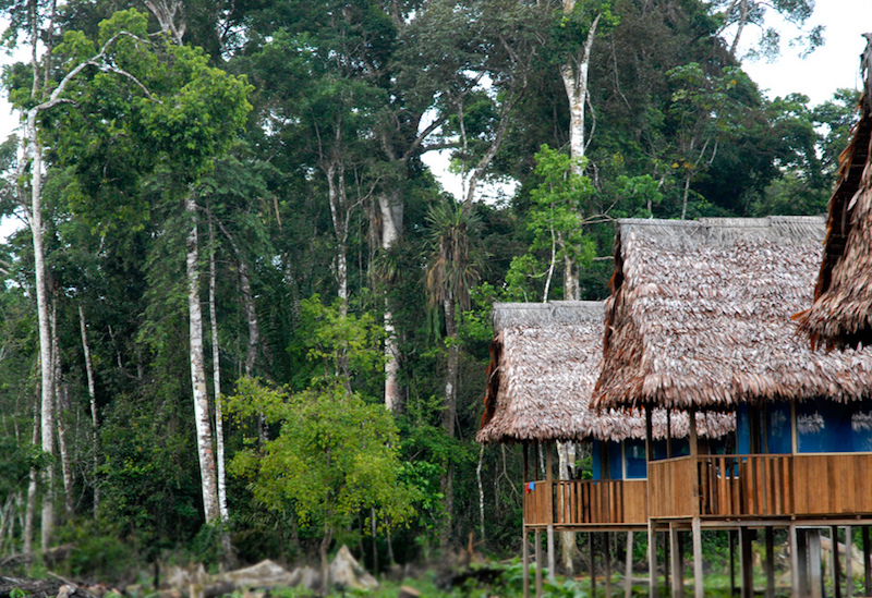 Copy of Curassow Lodge - Yanayacu River