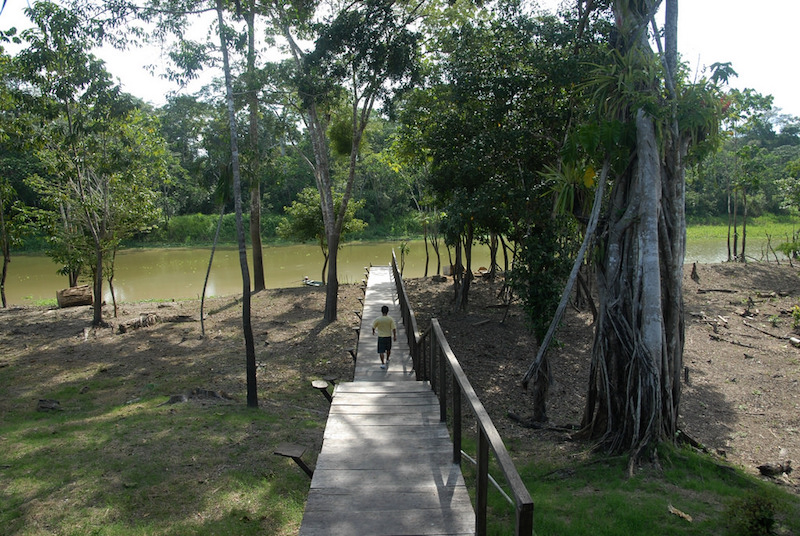 Curassow Lodge - Yanayacu River