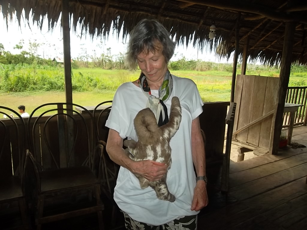 Anne Askew - Treehouse Lodge - Sloth.JPG