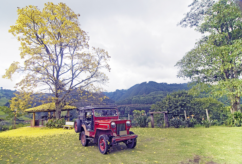 Colombian Highlights - Coffee Region - Hacienda Garden.jpg