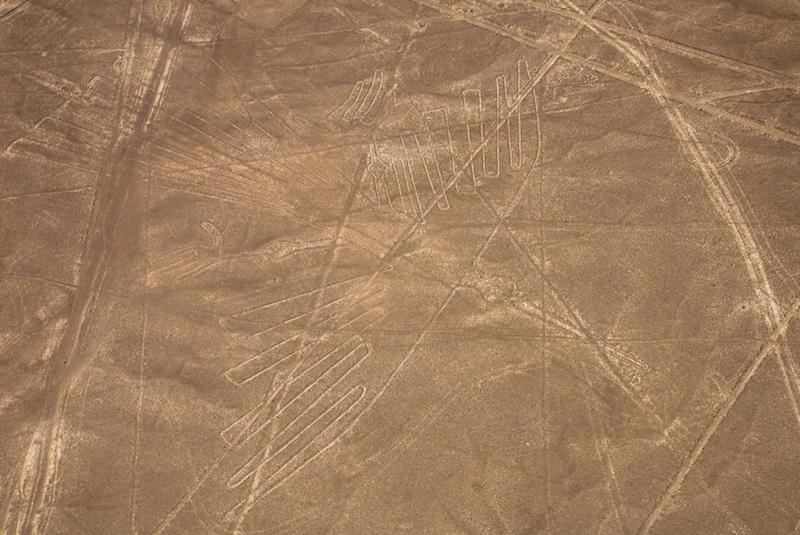 Paracas & Nazca Lines 3D - The Condor.jpg