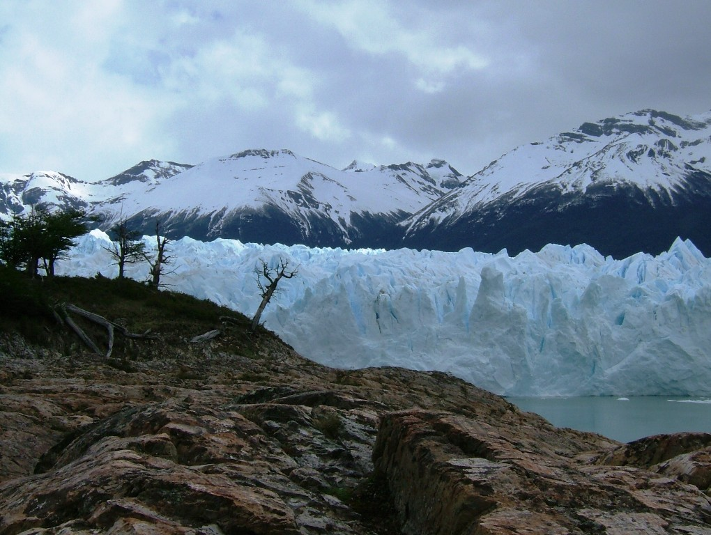 Iguazu Falls & Buenos Aires 7D - Calafate - Perito Moreno Glacier with Trees.JPG