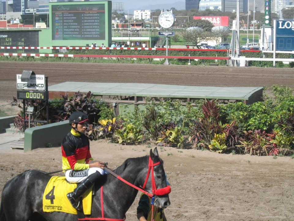 Horse Racing in Lima - Hipodromo de Monterrico6.jpg