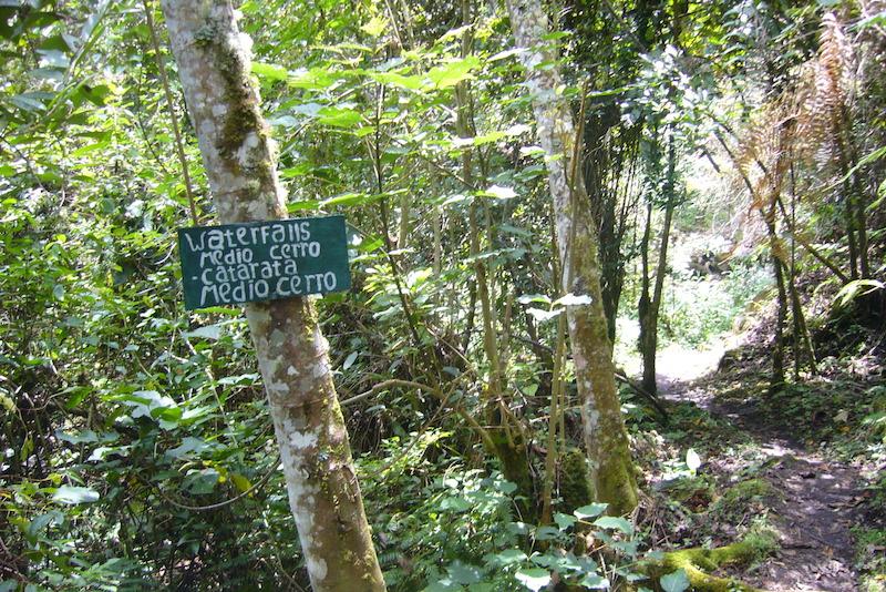 Hike to Yumbilla Waterfall, Cuispes2.JPG