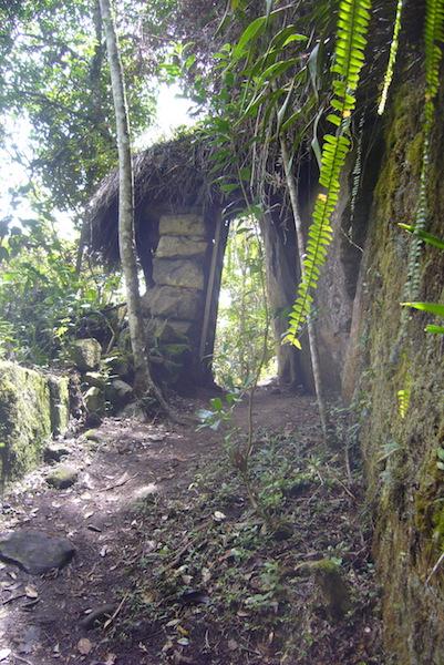 Hike to Yumbilla Waterfall, Cuispes5.JPG