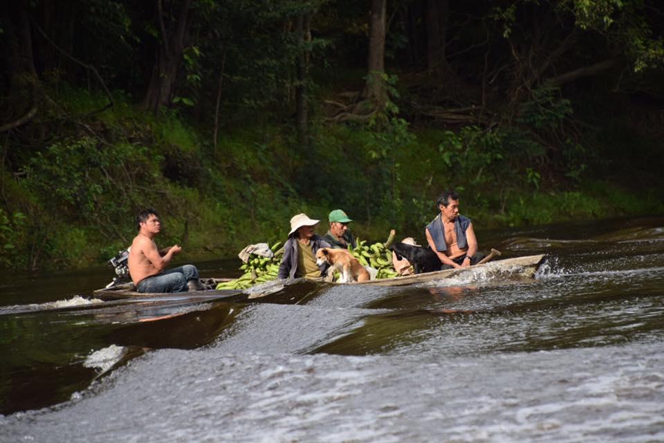 De Bruin x 2 - Tahuayo Lodge12.jpg