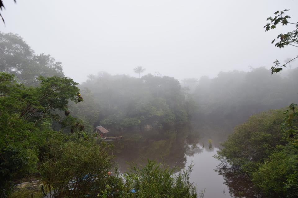 De Bruin x 2 - Tahuayo Lodge14.jpg
