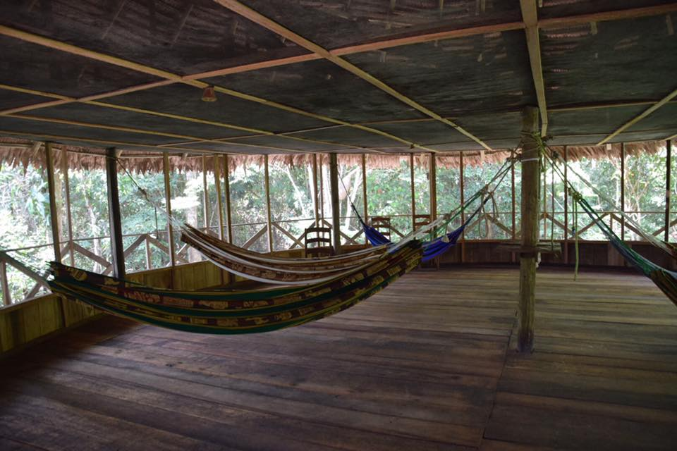 De Bruin x 2 - Tahuayo Lodge18.jpg