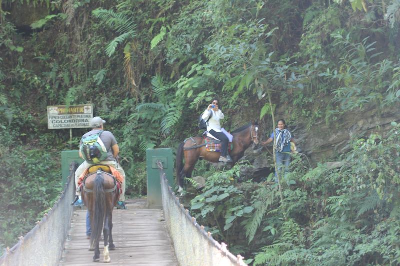 Tarapoto - Trujillo 9D - Gocta Falls by Horseback.jpg