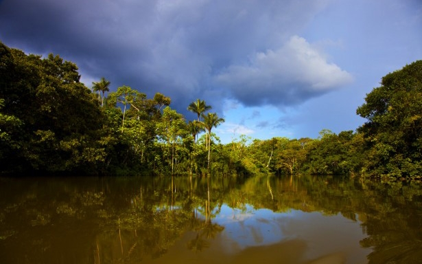 'Jungle of Mirrors' in the west of Pacaya-Samiria Reserve.