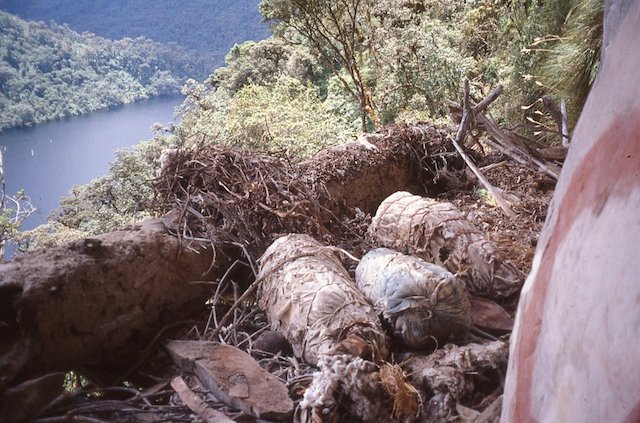 Mummies at Laguna de los Condores, as they were discovered.
