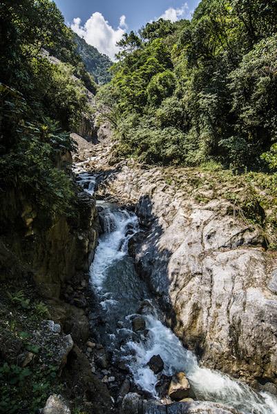 Yanachaga - Chemillen National Park6.jpg