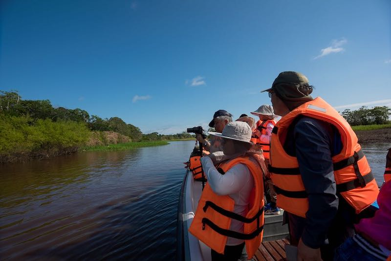R&F Amazon Cruise: Birding Excursion