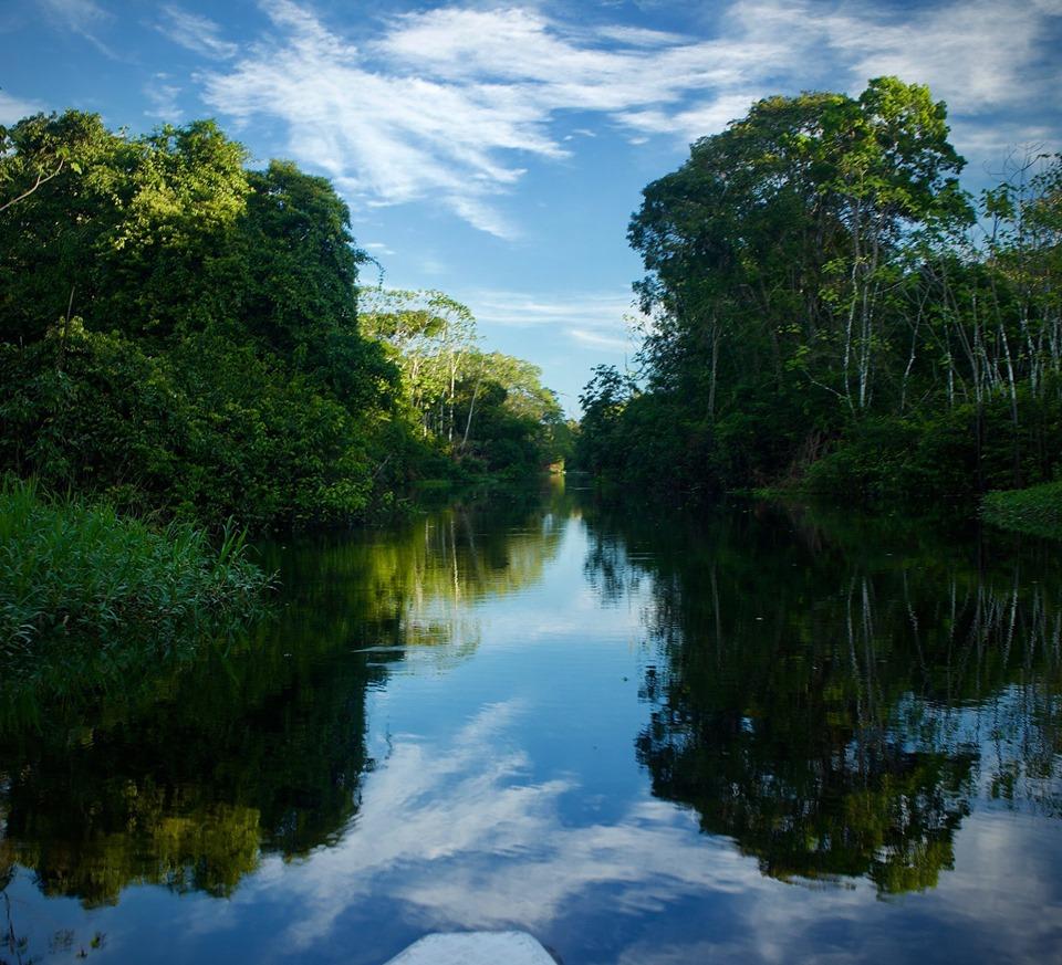 Walter x 2 Testimonial - Pacaya-Samiria Amazon Lodge - Jungle of Mirrors.jpg