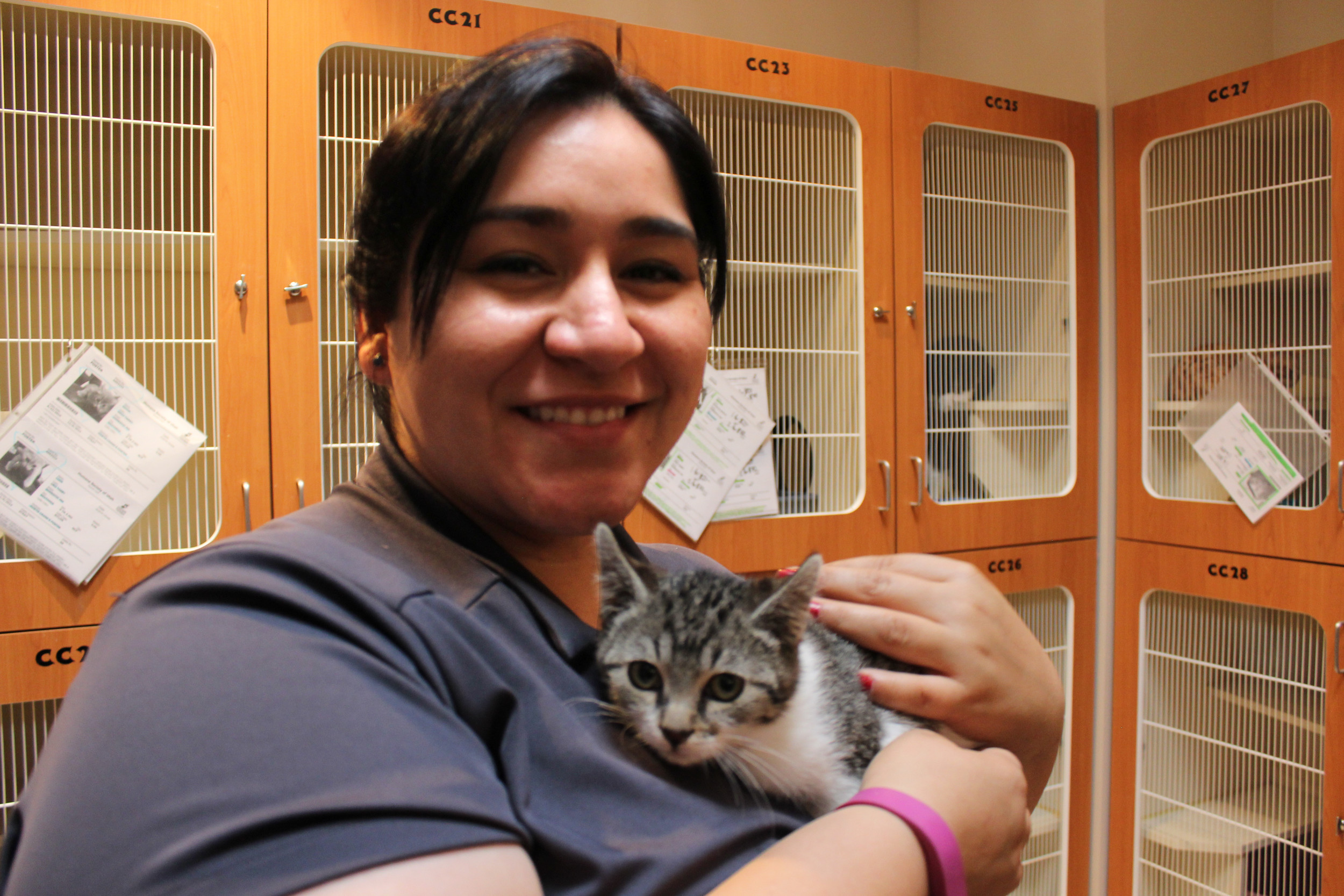 Student Life Coordinator and Housing Program Manager Corrine Padilla volunteers with the Society of Women Engineers at the Utah Humane Society.