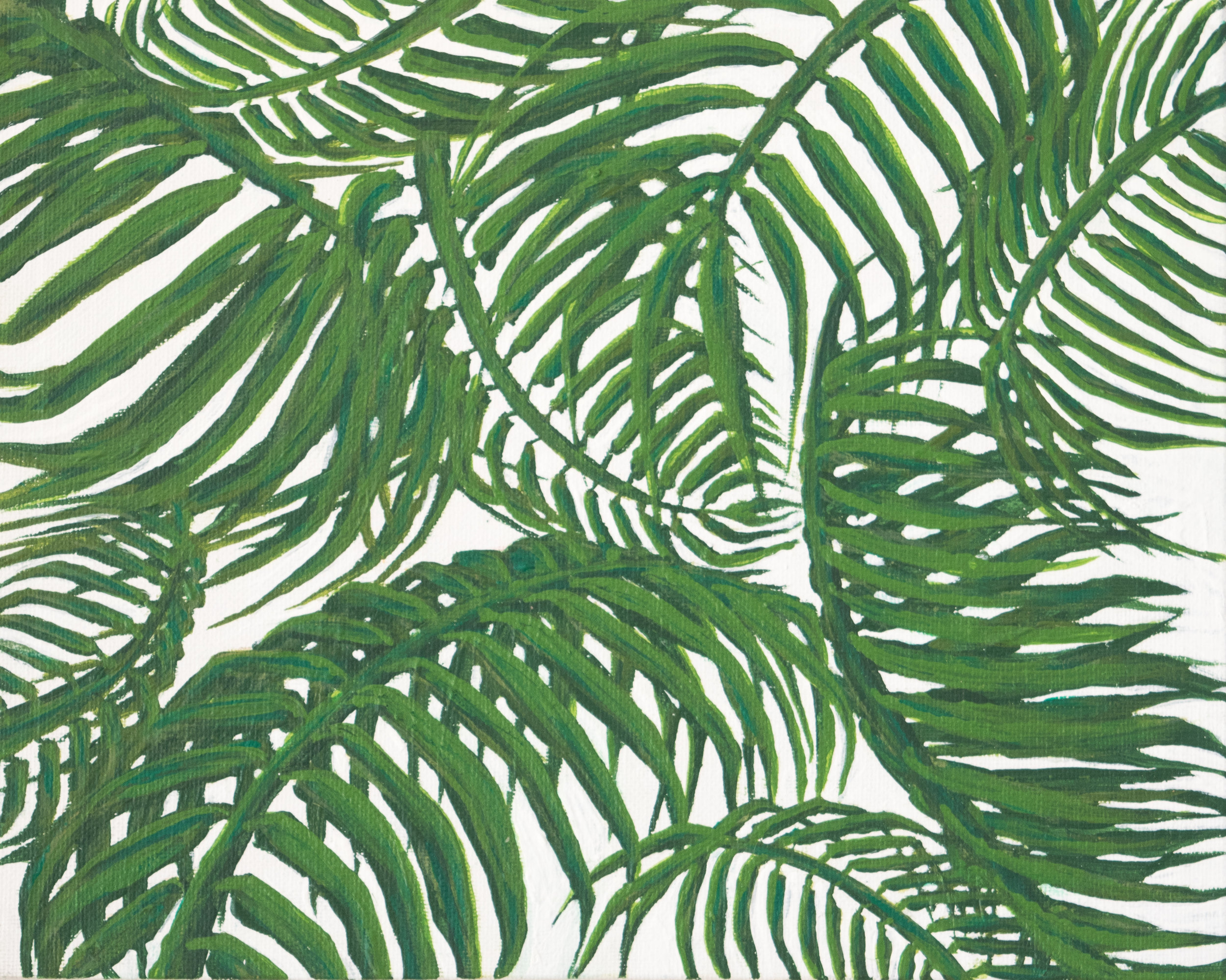 palm leaves.jpg