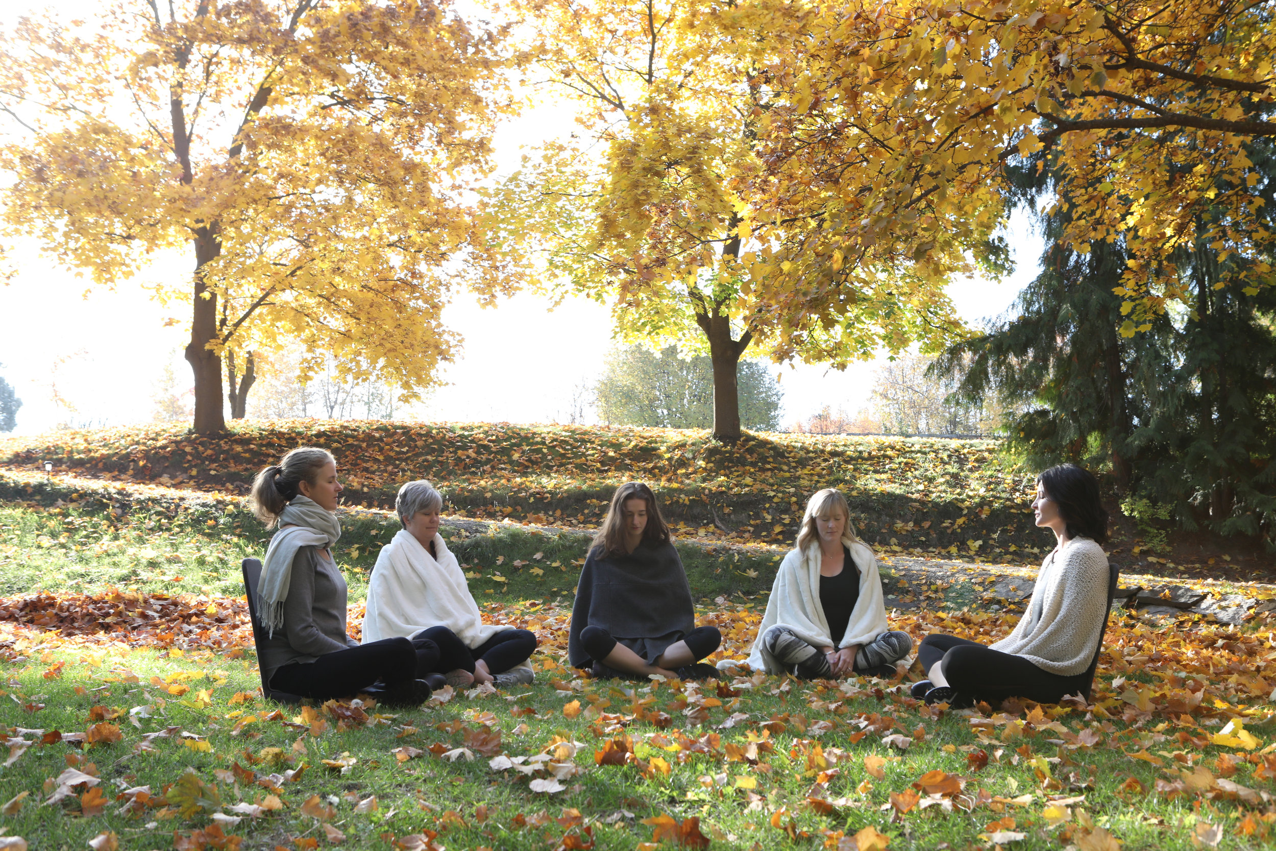 guided, group meditation - meditate