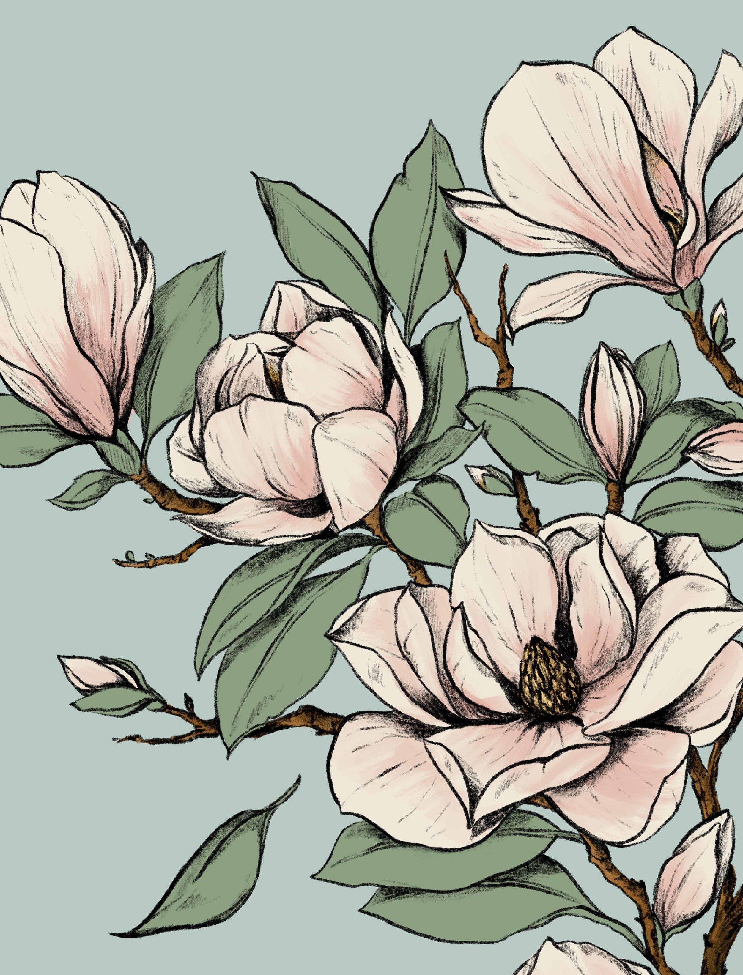 magnolias-PRINTs.jpg