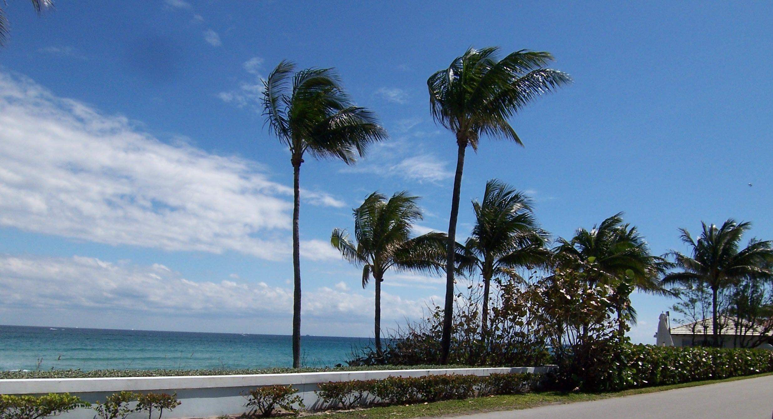 North Ocean Boulevard.JPG