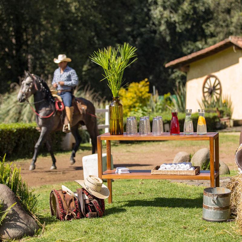 rancho_avandaro004_.jpg