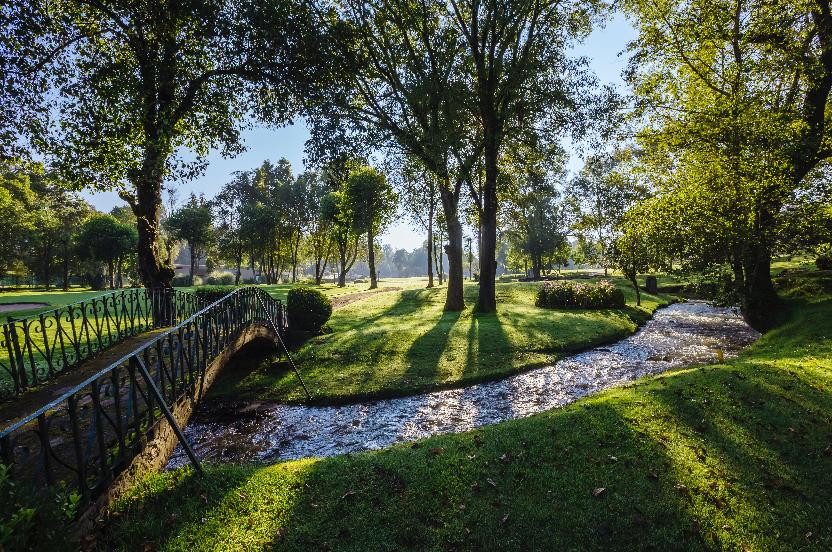 hotel y club de golf avandaro valle de bravo jardines.png