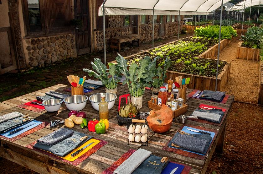 hotel avandaro valle de bravo grupos empresas actividades talleres huerto organico.png