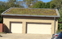 Minnesota Green Roof