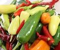mixed peppers TN.jpg