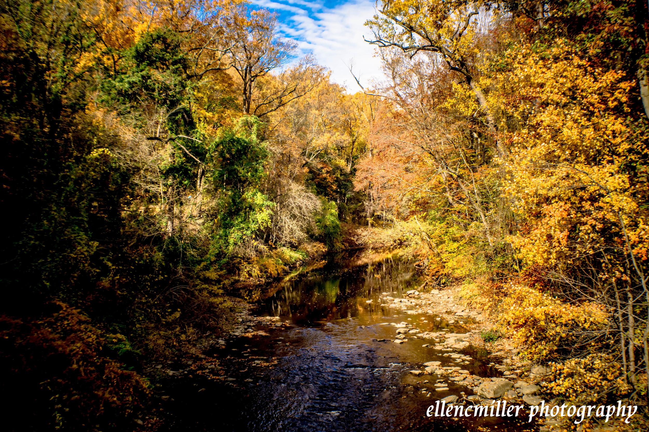 Wissahickon Creek