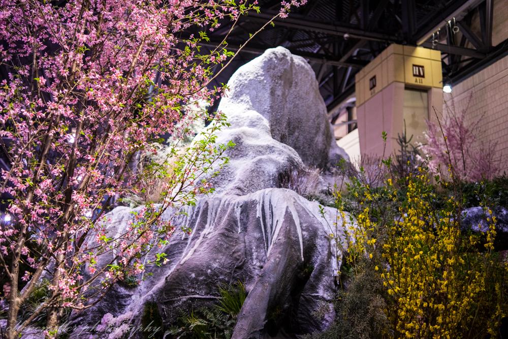 Phila Flower Show-9.jpg